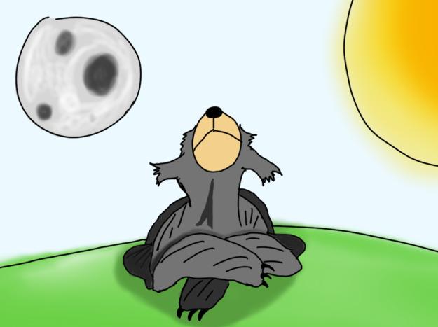 sun and moon (2)