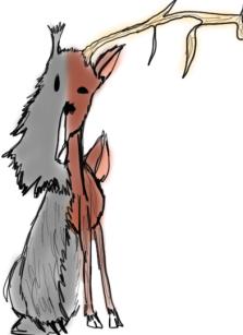 deer bear (2)