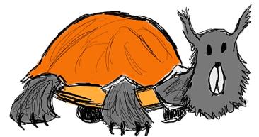turtle stuff (2)