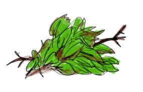 Leaf rating (4)